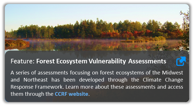 Image of forest with link to forest assessments